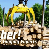 Timber! The Logging Experts Free Download