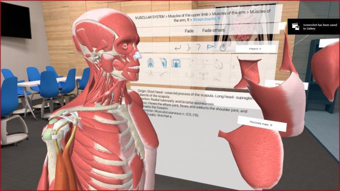 3D Organon VR Anatomy Torrent Download