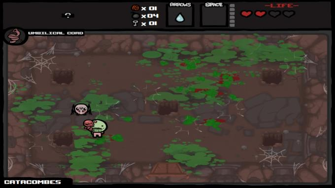 Binding of Isaac: Wrath of the Lamb PC Crack