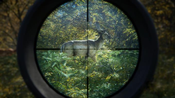 theHunter Call of the Wild 2019 Edition TruRACS Update Build 1681978 Torrent Download