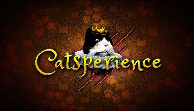 Catsperience-FLT
